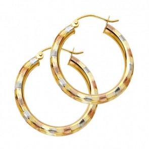 14K tricolor D/C Hoop earrings EJER1010